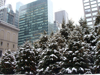 Manhattan_tree